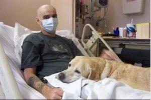 Therapy-dog-Duke-Health